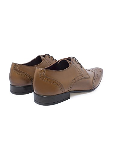 Limehaus Carlow Tan Formal Brogue LH9120803 by Suit Direct Tan 6:  Amazon.co.uk: Shoes & Bags