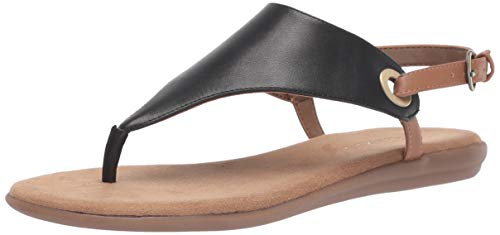 Aerosoles Women's in Conchlusion Flat Sandal, BLACK COMBO, 6 M US