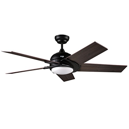 Reiga 52-Inch 5 Hand-Painted Blades Silent Ceiling Fan with light Remote...