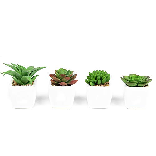 PaoriPets Artificial Succulents Pack of 4 Mini Realistic Fake Succulent Plants with Ceramic Pots for Home and Office…