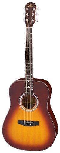 ARIA Model 211 TS ギグケース付き アコースティックギター B00HUKZNEG