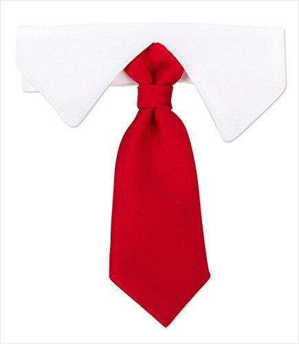 [Satin Necktie & Shirt Collar for Dogs (XS (8