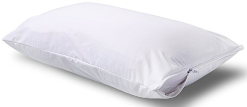 Queen Sized Bed Bug Cover Amazon