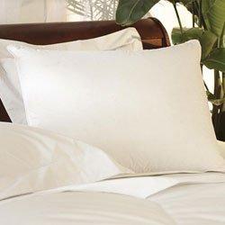 Pacific Coast Down Surround King Pillow Set (2 King Pillows) by Pacific Pillows