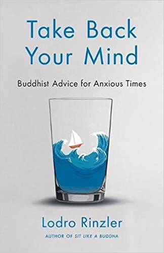 Take Back Your Mind: Buddhist Advice for Anxious Times by Lodro Rinzler