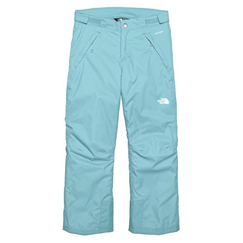 The North Face Youth Girl's Freedom Ski Snow Pants Nimbus Blue (Large) (North Face Sally Pant)