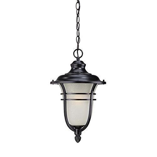 Acclaim 3676BK Montclair Collection 1-Light Outdoor Light Fixture Hanging Lantern, Matte Black by Acclaim