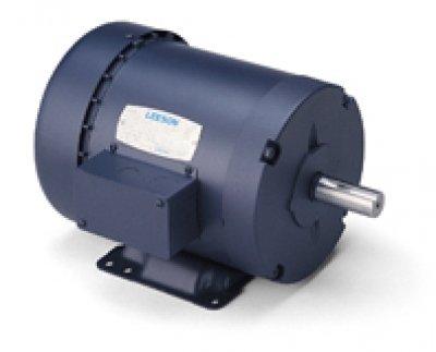 Leeson Electric, 121096.00, 1HP, 1425RPM, 3PH, 220V;380V;440V, 143T Frame, Standard Flange, Foot Mount, TEFC, General Purpose Motor - 50Hz ()