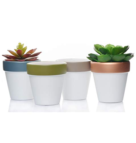 - Ceramic Terracotta Flower Pots 4 inch Small Clay Succulents Planter Ceramic Pottery Terra Cotta Flower Pot Cactus Nursery Pots Great Window Boxes, Cacti Plants, Crafts, Wedding Favors (4, White)