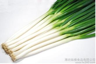 100 seeds/Pack China White Bunching Onion Seeds ,Green Onion Hot Vegetable