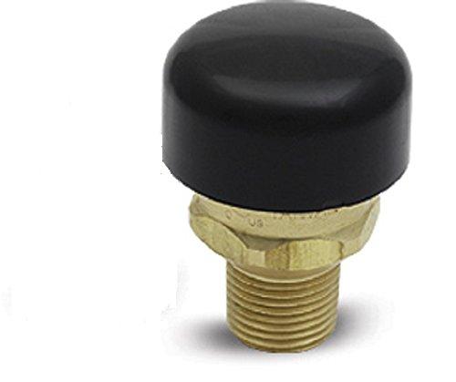 Vacuum Relief Valve, 125 psi, Cash Acme, 223980000LF