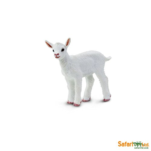 Safari Ltd. Kid Goat – Realistic Hand Painted Toy Figurine Model – Quality Construction from Phthalate, Lead and BPA Free Materials – For Ages 3 and Up