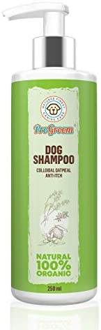 progroom Oatmeal Dog Shampoo – Vegan, Organic, Natural Puppy Shampoo – Sensitive Deshedding Shampoo for Dry Itchy Skin