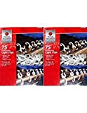 Home Accents Holiday All-Purpose Light Clips 2 pack (150 Clips)