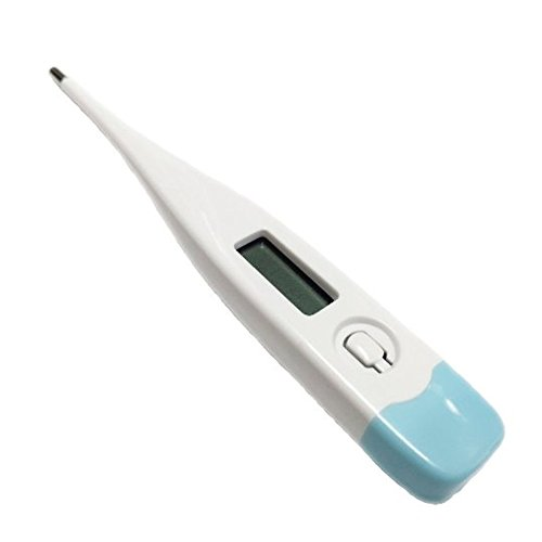 Digital Thermometer For Rectal, Oral and Axillary Body Temperature Measurement by Heritage Goods