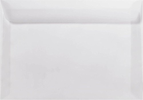 6 x 9 Booklet Envelopes - Clear Translucent (50 Qty.)   Perfect for Tax Season, Archiving, Sending Pamphlets, Brochures and so much More!   Printable   30lb Paper   E4820-00-50 Envelopes.com