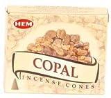 Copal HEM Incense Cone 10pk by Raven Blackwood