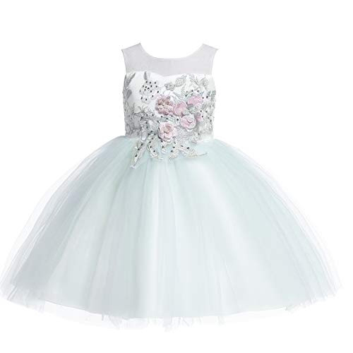 Weileenice 6M-12Y Kids Costume Cosplay Dress Girl Rainbow Tulle Dress with 3D Embroidery Beading Baby Girls Princess Dress (7-8Years, Mint Green)