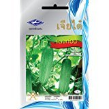 Price comparison product image Thai Medium Long Cucumber - Tang Ton (96 Seeds) Seeds - 1 Package From Chia Tai, Thailand
