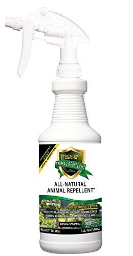 Natural Armor Animal & Rodent Repellent Spray. Repels Skunks, Raccoons, Rats, Mice, Deer Rodents & Critters. Repeller & Deterrent in Powerful Peppermint Formula - 32 FL. OZ. Quart Ready to Use