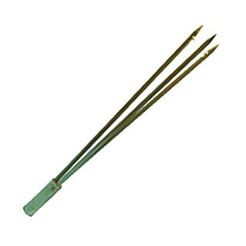 Stainless Steel 6mm Tip with Barbs for Spearfishing, Spear Fishing, Free Diving, Free Dive, Scuba Diving, Scuba Dive - Trident Tips