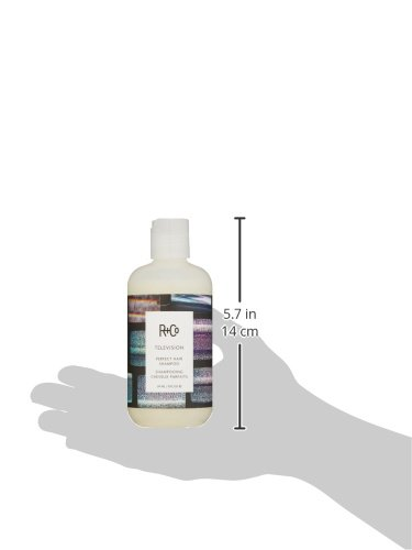 R+Co Television Perfect Hair Shampoo, 8 fl. oz. by R+Co (Image #3)