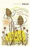 img - for The Worm Forgives the Plough (Penguin Twentieth Century Classics) book / textbook / text book