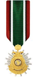 - Medals of America Saudi Arabia Liberation of Kuwait Medal Miniature Anodized