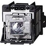 Replacement Lamp with Housing for R