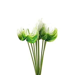 Floral Kingdom Real Touch Artificial Green White Anthurium Flowers for Tropical Decor, Floral Arrangements, Bouquets (Pack of 8) 3