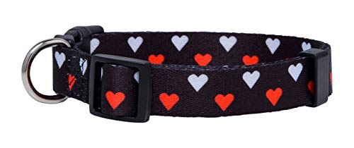 Pictures of Native Pup Valentine's Day Heart Dog White and Red Hearts 4