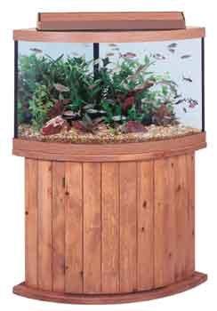 Amazon All Glass Aquarium Co 92 Gallon Corner Tank Oak 48 X 34 24 Hoods Everything Else