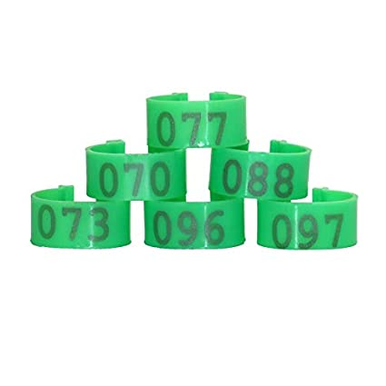 Amazon com: S-World-4Pet - 100Pcs/set Plastic Open Type