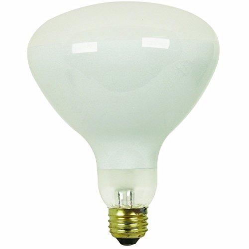 Pool Flood Light Bulbs - 6