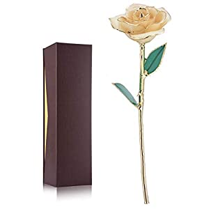 24K Gold Rose, Long Stem Dipped Flower Gift for Her, Made of Fresh Rose, Last Forever Mother's/Thanksgiving/Christmas/Valentine's/Birthdays Party/Graduations/Weddings 1