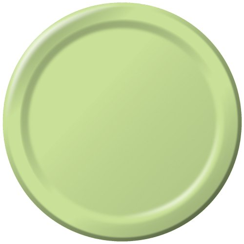 Creative Converting Touch of Color 24 Count Paper Lunch Plates, Pistachio ()