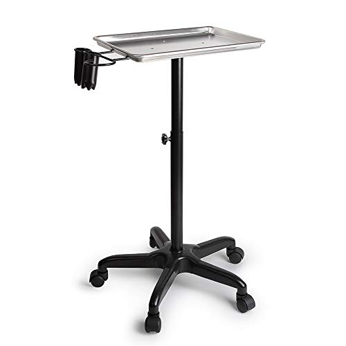 ERRU- Beauty Hairdressing Rolling Trolley Cart with Hairdryer Rack, Can Lift Aluminum Alloy Tool Holder Service Cart on Wheels (Color : Silver)