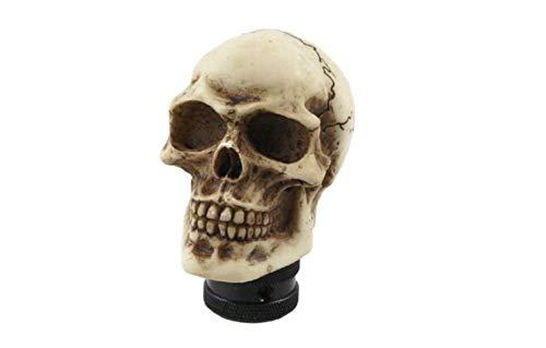 - Wanrane Gear Stick Shift Knob Skull Head,Truck Car Metal Skull Head Gear Speed Knob Cover(White)