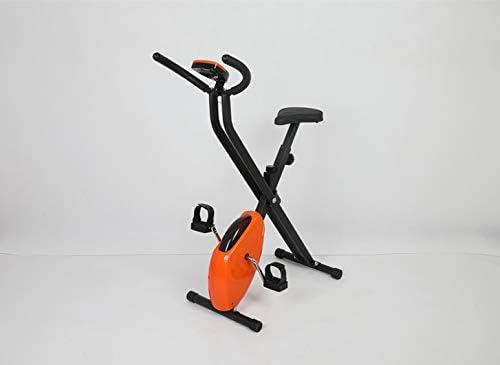 La View - Bicicleta estática para interiores y exteriores ...