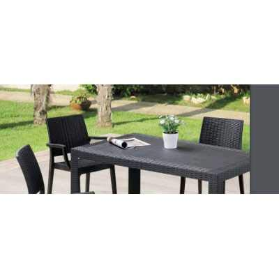 Europe Best Price Furniture Sibilla - Juego de 4 sillas (sillones ...