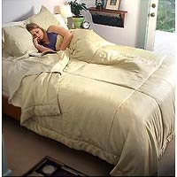- Seamless Silk Comforter Cover - 100% Silk by DreamSack King-White