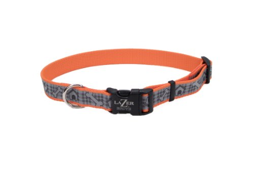 Coastal Pet 46941 ODH28 Lazer Brite Reflective Adjustable Dog Collar, Adjusts from 18-26-Inch and 1-Inch Wide, My Pet Supplies