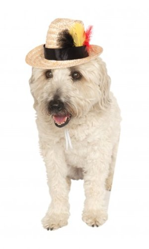 Rubie's Fedora with Feather Pet Costume Accessory, Small/Medium