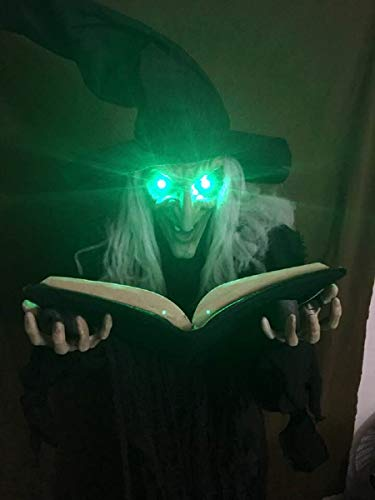 Nantucket Witchy Winifred Holding Spellbook Halloween Standing Prop Decoration by Nantucket (Image #2)