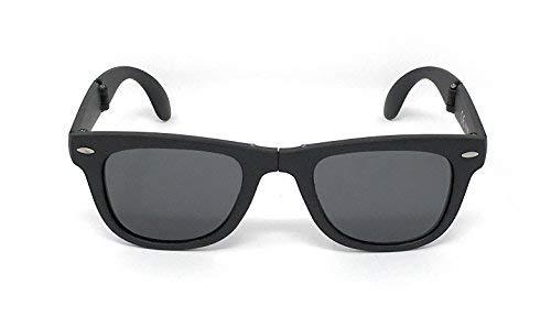 LAGO TERRA - Wayfolder Gafas de sol polarizadas - para hombre (negro mate)
