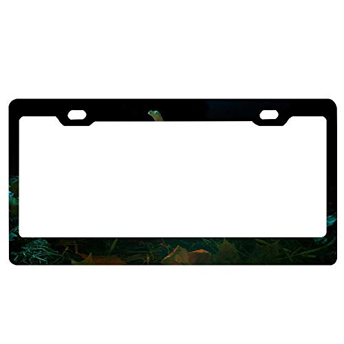 (SportsFloraling Celebrating Halloween Black License Plate Frame, Aluminum Metal Car Licence Plate Cover Slim Design with Screws Caps for US)