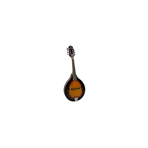 - Hohner 6 String Acoustic Guitar (AAM40TSB)