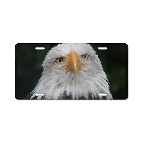 SFHU Lone Bald Eagle License Plate Frames 4 Hole Kit Fits All US - Plate Frame Eagle Lone License