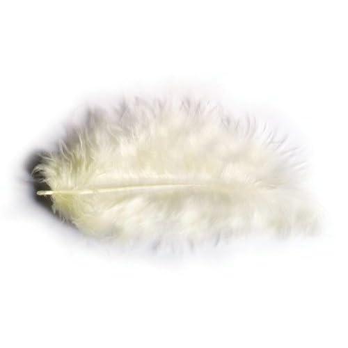 Chaks 0702-01, Sachet 10g de 100 plumes 5-10cm, ivoire
