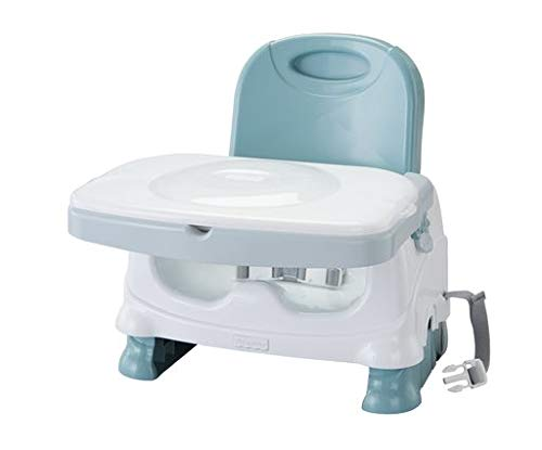 Fisher-Price Healthy Care Deluxe Booster Seat (High Plastic Table)